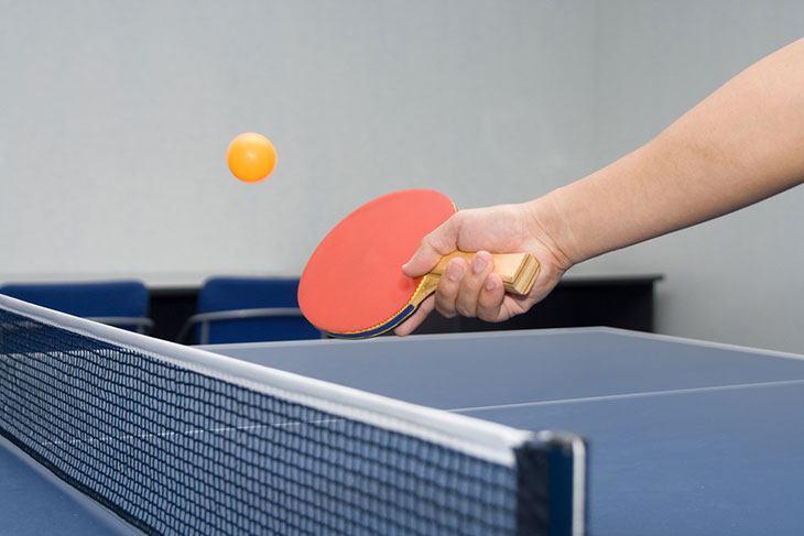 top ping pong robots